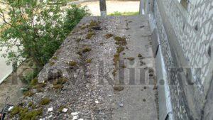 Скопившийся за долгие годы мусор и образовавшийся мох на козырьке
